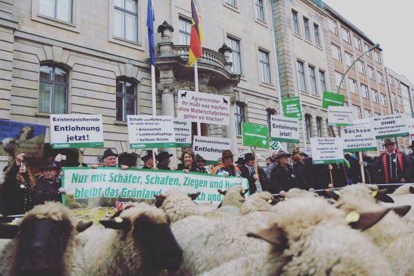 Eine Demonstration von SchäferInnen.